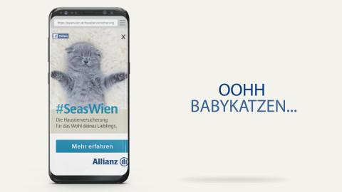 Allianz – Schnurrende Katze
