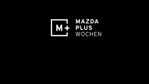 Mazda hält für Katze in Sitebranding
