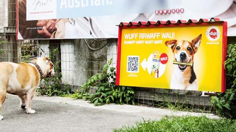 Erstes Plakat für Hunde