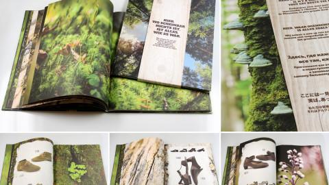SUPERFIT Image-Kataloge