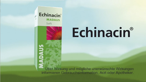 echinacin3