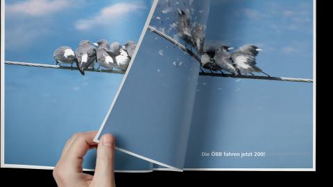 Print Vögel umblätter