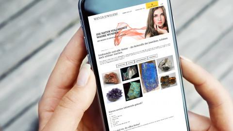 Website on Smartphone