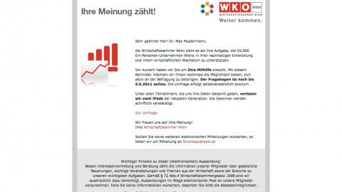 Online-Umfrage bei Ein-Personen-Unternehmen für die Wirtschaftskammer - Forum EPU