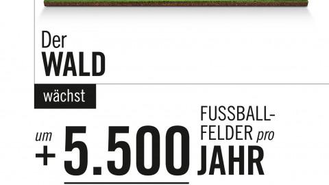 Inserat HF_Feld
