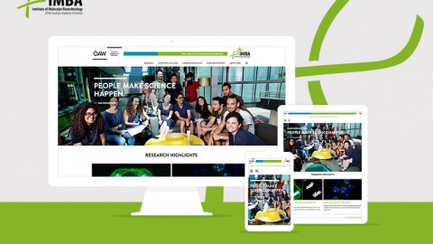 IMBA Website