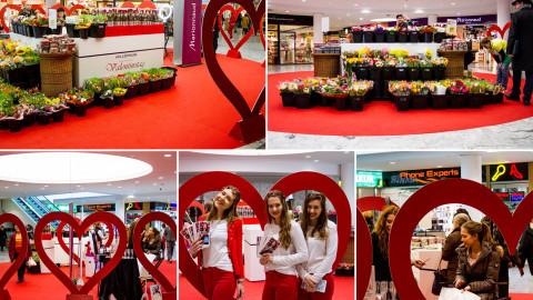 Valentinstag Promotion