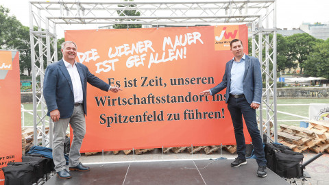 Wiener Mauerfall