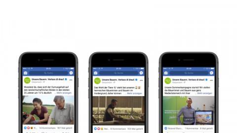 Bewerbung SocialMedia