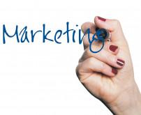 B2B-Marketing unter der Lupe