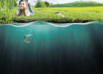 Hofer baut den Wasserschutz aus