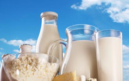 Deutsche Milchbauern fordern staatliche Eingriffe