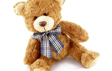 Teddy im VKI-Test
