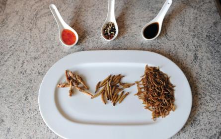 Convenience ist modern, Insekten werden Nahrung