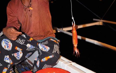 WWF hat großen Fisch am Haken