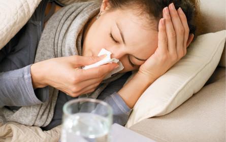 Influenza: Höhepunkt