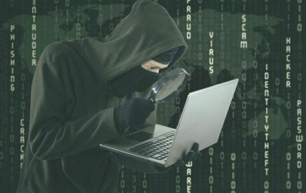Cyberkriminalität wächst auch in Österreich