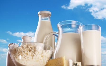 Kein Käse ohne Milch