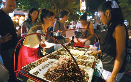 Insekten am Buffet: Unser Essen wird bald krabbeln