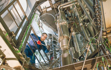Biomasse noch effektiver nutzen