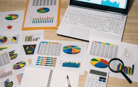 Unter der Lupe: Versicherer und ihre Online-Angebote