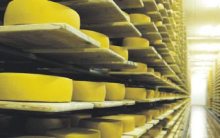 Käse, ein Exportkaiser