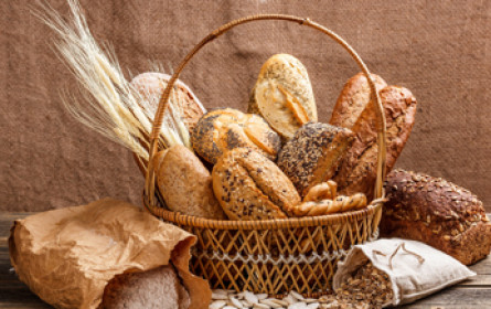 Wer backt das beste Brot?