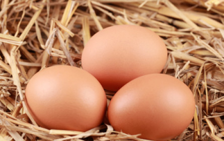 Beim Eierkauf zählt die Herkunft