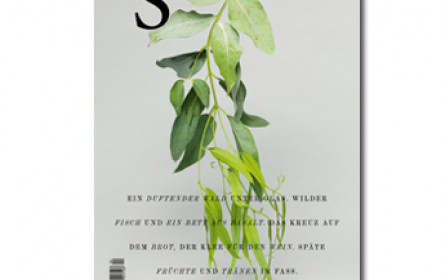 """Bronzener Nagel für das  """"Das S Magazin"""""""