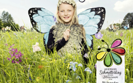 Kampagne zur Rettung des bedrohten Schmetterlings