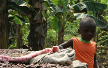Schoko-Check zum Tag gegen Kinderarbeit