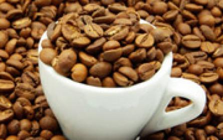 Mit steirischem Röstkaffee die Gastronomie erobern?