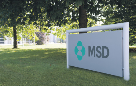 MSD feiert Geburtstag