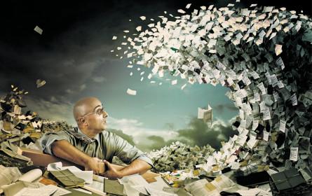 So steuern heimische Steuermänner die Steuern