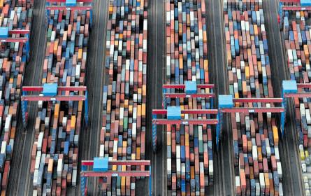 Exportrisiken als Hemmschuh