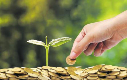 Die Stifter und ihre guten Investments
