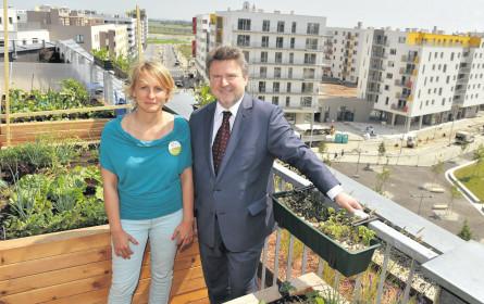 Es gibt viel zu tun für den Wiener Wohnbaustadtrat