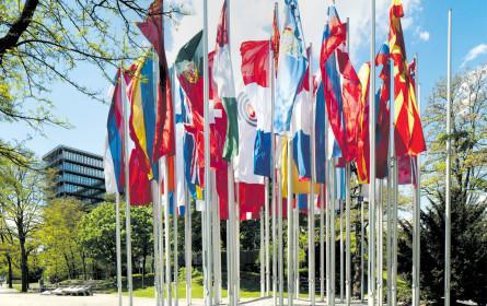 Unternehmen legen immer mehr Wert auf Patentschutz