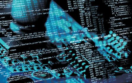 Mehr Sicherheit im Netz