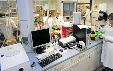 Neuer Auftrag für Grazer Forscher