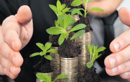 Wenn Unternehmen Stiftungen gründen