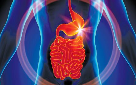 Forschung bringt Erfolge gegen Darmkrankheiten