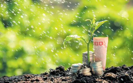 Retail-Banking: ein zartes Pflänzchen