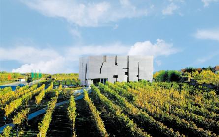 Wein-Workshops