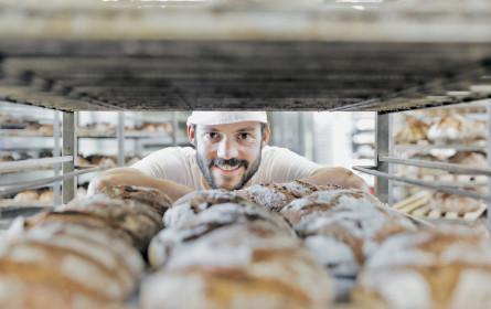 Wie kommt Bio ins Brot?