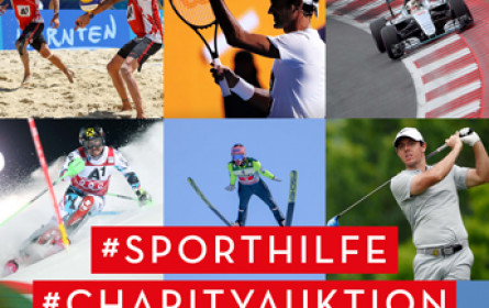 12. Edition der Sporthilfe Charity-Auktion