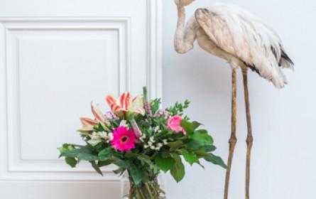 Neuer Onlinehandel für Blumen