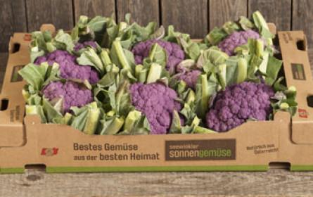 Blauer Karfiol, Romanesco und heimische Süßkartoffeln