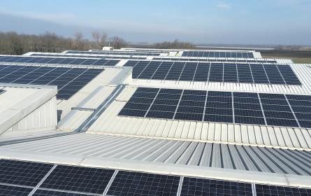Neue Solar-Power für Seewinkler