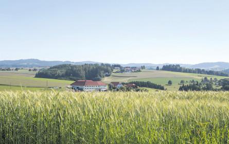 Bio-Landwirtschaft auf dem Vormarsch